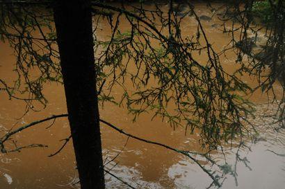 Pattijoen veden pinta nousi selvästi