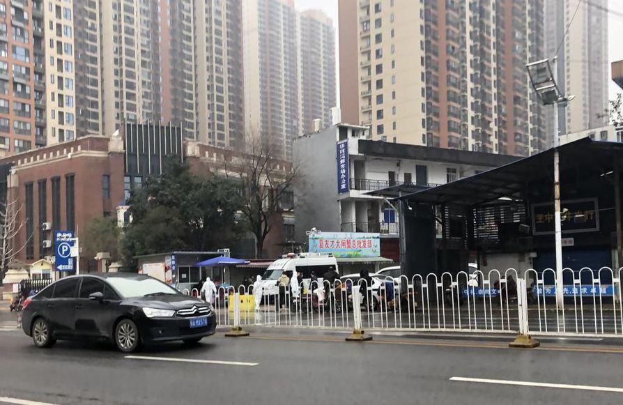 Koronavirusepidemian arvellaan olevan lähtöisin Wuhanin kaupungissa sijaitsevalta kalatorilta. Kiinassa levinnyt virus on tartuttanut tiettävästi yli 300 ihmistä ja surmannut ainakin kuusi.