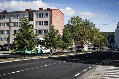 Kurtturuusut saivat kyytiä – Rovaniemi aloitti tänä kesänä haitallisten ruusupensaiden poistamisen, työt jatkuvat ensi vuonna