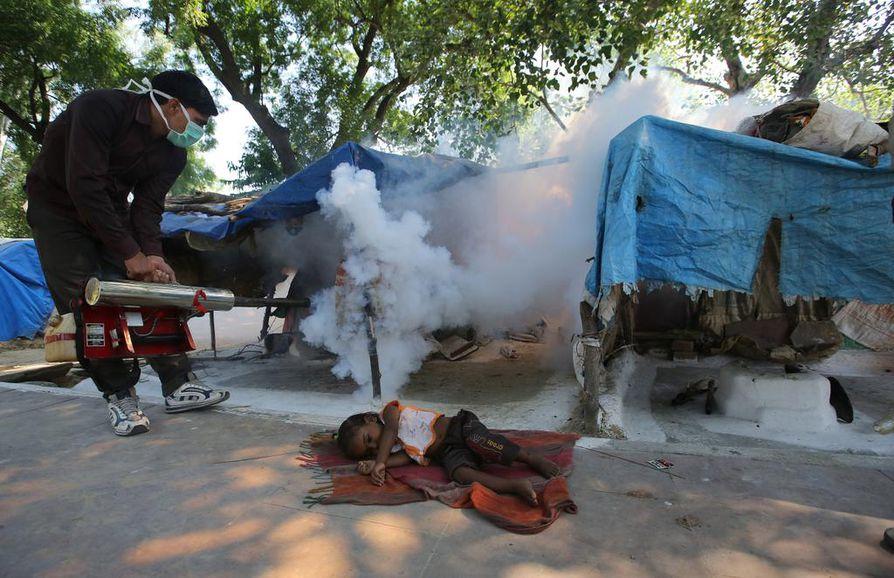 Ympäristöolosuhteet hyttysille ja samalla useille niiden levittämille taudeille paranevat ilmaston lämmetessä. Denguekuumetta aiheuttavia hyttysiä savutetaan Intian Delhissä.