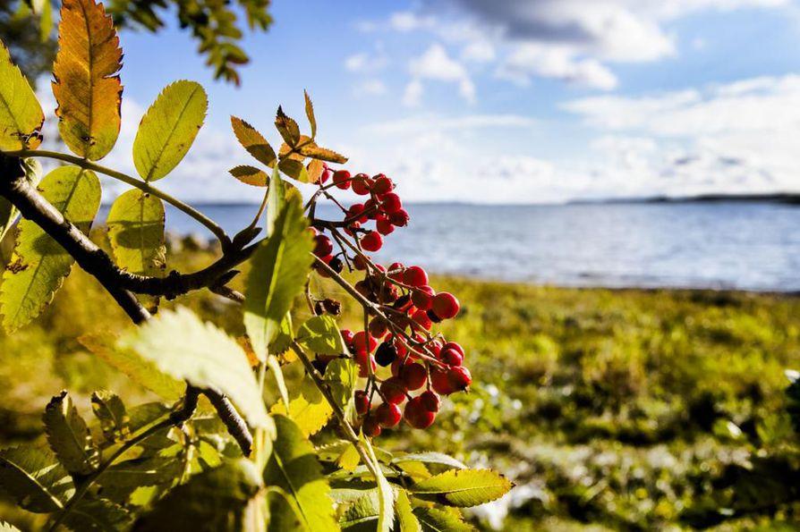 Viikonlopun sää on Oulun seudulla poutainen ja lämmin, lupaa Ilmatieteen laitos.