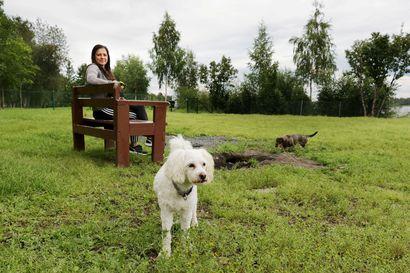 Meri-Lapin seuraava koirapuisto tulee Keminmaahan –Koirapuistossa käydään monta kertaa viikossa