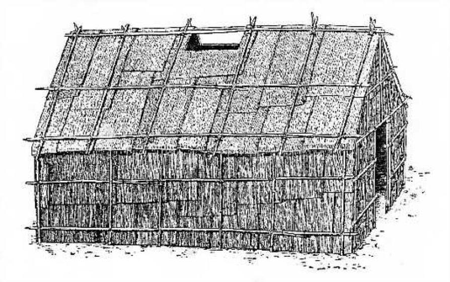 Talo tuohesta. Suuri osa itäisen metsäseudun intiaaneista asui alun perin tuohikatteisissa, kupolimaissa 'pitkätaloissa'. Delawa-rien asumukset olivat muista poiketen harjakattoisia. (Kuva teok-sesta C. A. Weslager: The Delaware Indians. New Brunswick 1996)