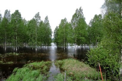 Tornionjoen tulvahuippu muutaman päivän päässä, Kemijoella tulva helpottaa jo – Kittilässä Ounasjoki häilyi viikon verran vahinkorajan tuntumassa