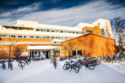 Lapin yliopisto ja pohjoisen valovoimainen tulevaisuus