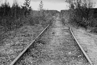 Ekologiaa ja ekonomiaa Sallan radan avulla