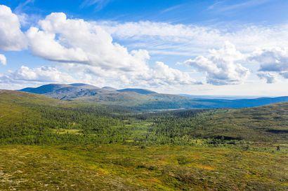 Hetta-Pallas on Suomen vanhin patikka –55 kilometrin vaellus tarjoaa hikistä nousua ja laskua, mykistäviä maisemia ja piittamattomien vaeltajien roskia