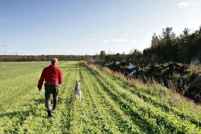 Karhunmetsästys alkaa torstaina – tuhannet metsästäjät osallistuvat pyyntiin