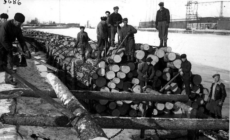 Tukkinippuja koottiin Toppilan satamassa Ruotsiin hinausta varten. Laivoilla kuljetettiin pöllejä. Kuva kevättalvelta 1949.