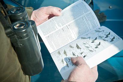 Tammikuun lopussa taas bongataan –Osallistu Suomen suurimpaan lintutapahtumaan omalta pihaltasi