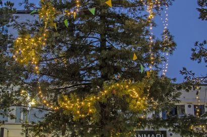 Äänestä Härkätorin kauneinta puuta