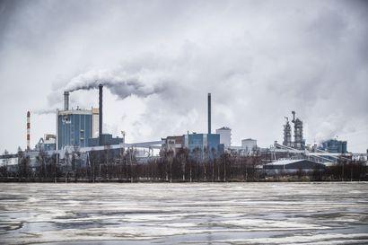 Finnvera takaa biotuotetehdasta liki puolella miljardilla – näin Raumalle rakennettava jättisaha liittyy Kemin-hankkeeseen