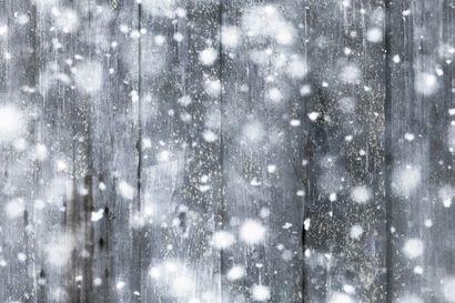 Arktikumin kesä alkaa talvinäyttelyllä - Huikeat luontokuvat kertovat, miten käy, kun talvi muuttuu