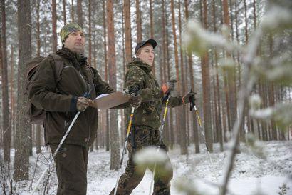 """Vähän lunta ja vähän jälkiä, riistan talvilaskenta kärsii –Mitäpä metsästä sitten löytyi? """"Teeriä näkyi pari isoa parvea"""""""