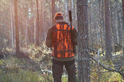 Metsähallitus ei voi ohittaa enää olankohautuksella pohjoisesta kantautuvaa jahtikritiikkiä