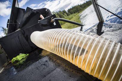 Vain muutama mereltä Kemijokeen pyrkineistä oli luonnonlohi – Oliko joku niistä Ounasjoen kautta tullut?