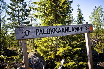 """Ympäristöministeriöön on ehdotettu uutta kansallispuistoa nimeltään Lounais-Lapin Erämaa – """"Paikallisten näkökulmasta alueessa on se etu, että alue on valtion omistamaa maata"""""""