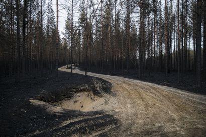 Poliisi tutkii Muhoksen suurta metsäpaloa nyt yleisvaaran tuottamuksena – tutkinnanjohtaja ei ota kantaa siihen, onko jutussa rikoksesta epäiltyjä