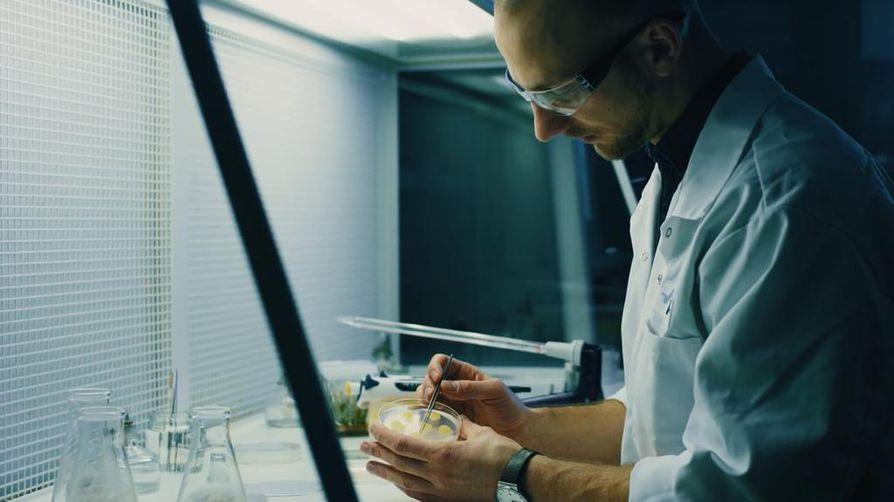 VTT:n tutkija, tohtori Lauri Reuter kehittelee synteettistä ruokaa VTT:n tutkimuslaitoksella Espoossa. Kasvisoluja voidaan tulevaisuudessa käyttää joko ainesosiksi elintarvikkeisiin tai ruoaksi sellaisenaan.