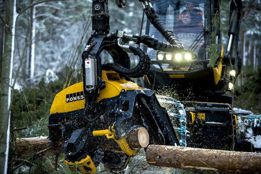 Kainuun ely-keskus kertoo, että metsätaloudessa on myös pitkästä aikaa markkinalähtöistä kasvua.