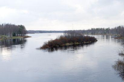 Syystulvat kohta huipussaan Iijoen vesistössä – vedet 30-70 senttiä normaalia korkeammalla
