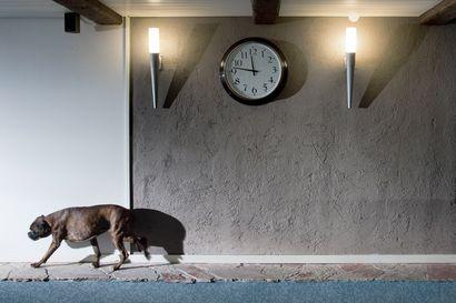 Hiekkaa seinämaalin sekaan, laastia kipsilevylle – Pia Latonen halusi eloisaa pintaa sisäseiniin ja piilotti keltaisen tiiliseinän rappauksen alle