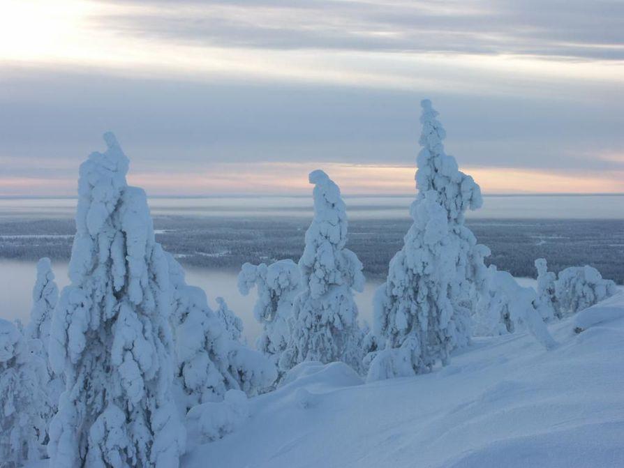 Kuusamon talvi houkuttelee yhä enemmän ulkomaisia matkailijoita.