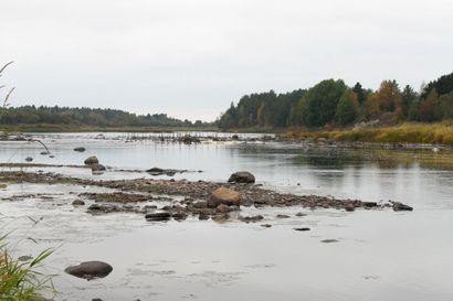 Aloite Siikajoen vesiensuojelun tilasta
