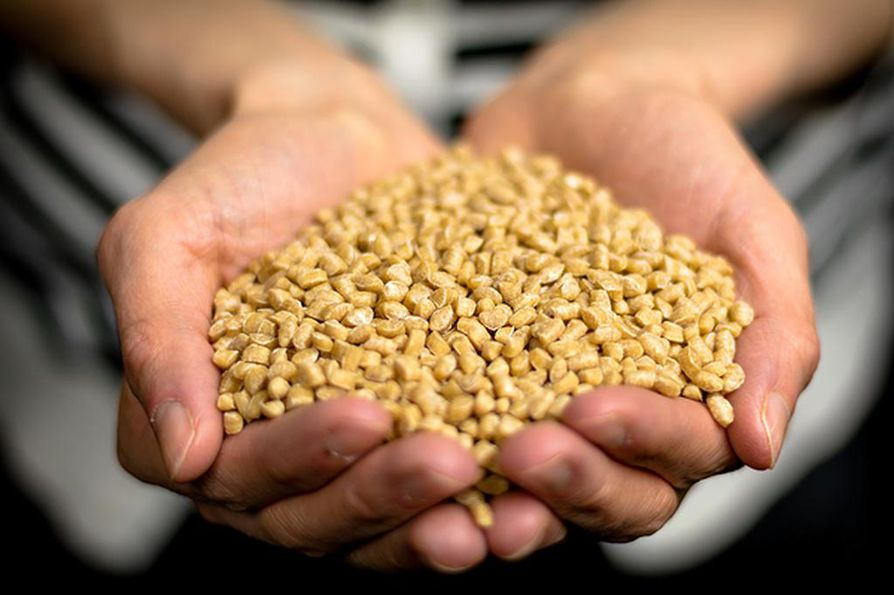 Stora Enson mukaan biokomposiitin avulla voidaan korvata puukuidulla jopa puolet fossiilipohjaisesta muovista pakkausmateriaalissa. Kuvituskuvassa biokomposiittikansiin käytettävää puukuitua.