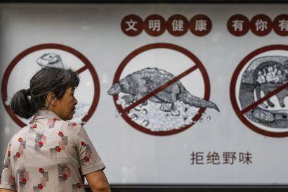 Amerikkalaistutkimus: Koronavirus saattoi levitä Kiinassa jo viime vuoden elokuussa