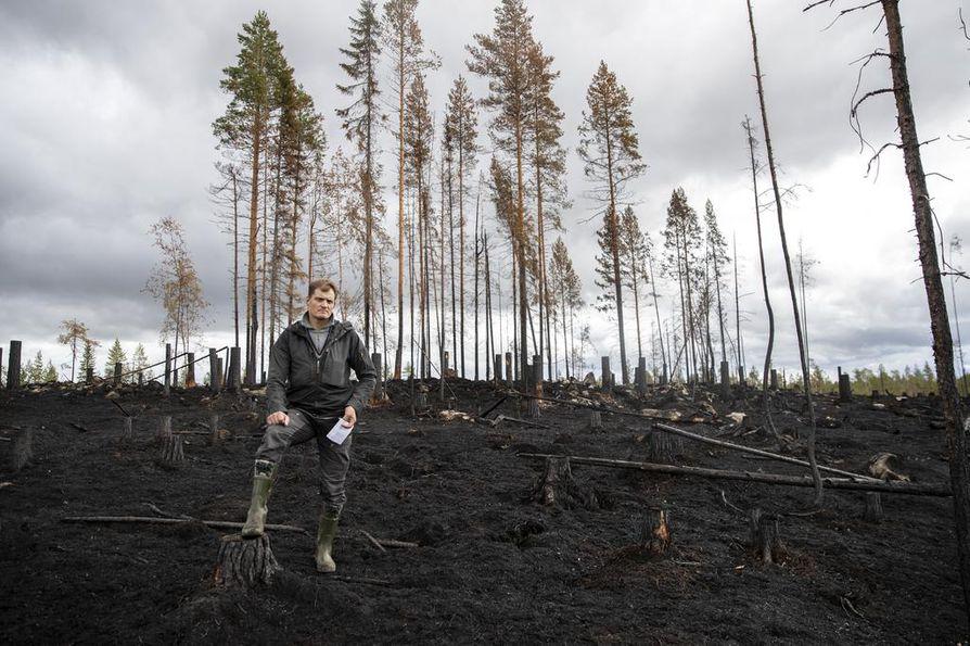 Metsäkeskuksen Ville Koukkarin takana on esihistoriallisena aikana rakennettu jätinkirkko, jonka keskelle on jätetty puita pystyyn.