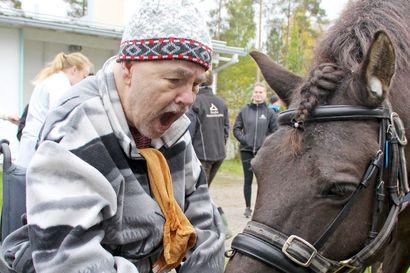 Hevonen ei ole mikä tahansa eläin – vanhustenviikon mieluisa vieras Mäkelänrinteellä