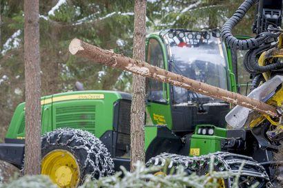 Metsäteollisuus aloittaa joulukuussa työsulut sahoilla ja vaneritehtailla – kyseessä on vastatoimi työntekijöiden lakkoon