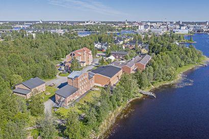 Oulu luopui erämuseon tavoittelusta – kustannukset liian suuret