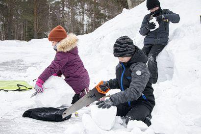 Monenlaista talvipuuhailua hiihtolomalla – käytössä lumikengät ja raksavälineet
