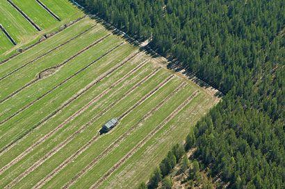 Peltotukien valvonnat käynnistyvät Lapissa – Valvontakäyntejä noin 50 maatilalle