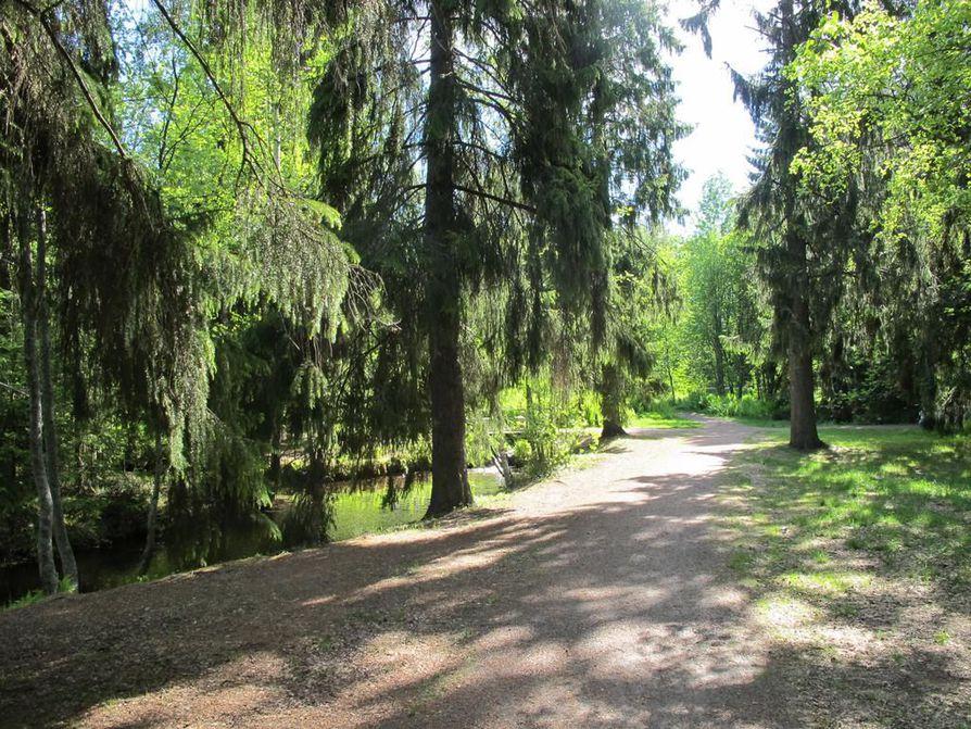 Ainolan puistossa pyöräillään ilmaston puolesta perjantaina iltapäivällä.
