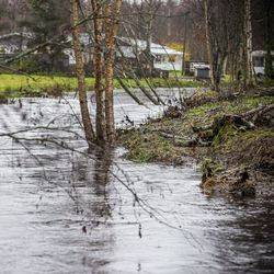 Tulvahuiput tulevat tänään