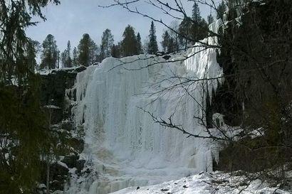 Jääkiipeilijöiden unelmapaikka - Korouoman 14 jääputousta tuovat kiipeilyn harrastajat joka talvi Posiolle