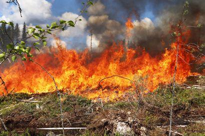 Pienet sateet eivät poista metsäpalon vaaraa – Lapin pelastuslaitoksella ollaan kuivaan aikaan herkässä valmiudessa