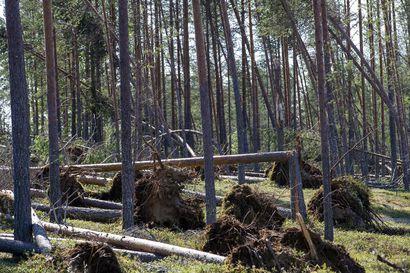 Riikka-rajuilma kulkee tänään Suomen yli – jopa yli 25 metriä sekunnissa puhaltavat ukkospuuskat osuvat pahiten maan itäosiin