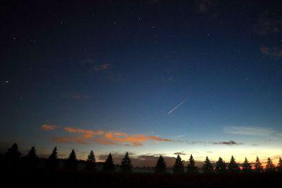 Tähdenlentojen aika on alkanut joten nyt kannattaa katsella niitä selällään vaikka trampoliinilta
