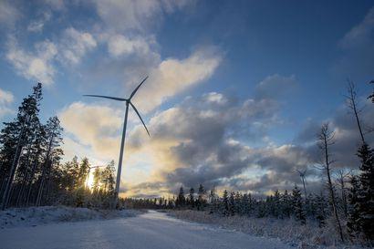 Hukkuvan oljenkorsi ei auta – tuulivoima talouden pelastajana voidaan unohtaa