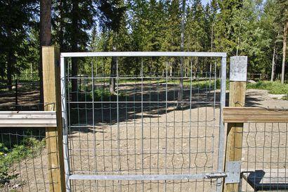 Pattijoelle halutaan koirapuisto – Kuuselassa valmiiksi aidattu alue