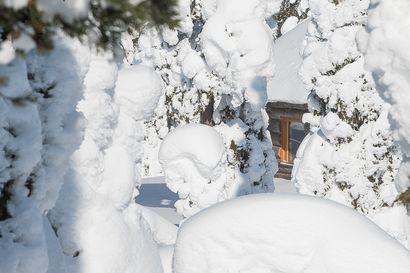 Lomarengas: Huippuvuosi mökkivarauksissa– kokenut työntekijä paljastaa, mikä Kuusamossa viehättää matkailijaa