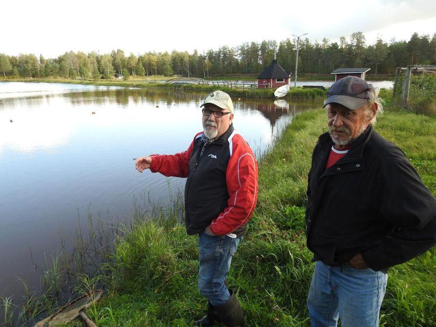 Esko Luukkonen ja Tapani Korpela hoitavat Pelson lohilampea, jossa on pidetty tänä syksynäkin onkikilpailuja.