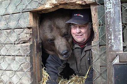 Kuusamolaisen Niisku-Karhun talviunia seurataan karhukamerassa