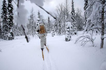 Osassa Lappia päästän kokeilmenna latvalinnustusta – Miten metsästysluvat kävivät kaupaksi?