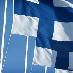 Aloite vihreiden puoluekokoukselle: Suomen lipun häpäisy sallittava