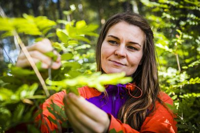 Epävarmuus piinaa tutkijaa uran alussa – rovaniemeläinen Salla Kalliojärvi haki rahoitusta väitöskirjalleen yli kolme vuotta, kunnes lopulta tärppäsi